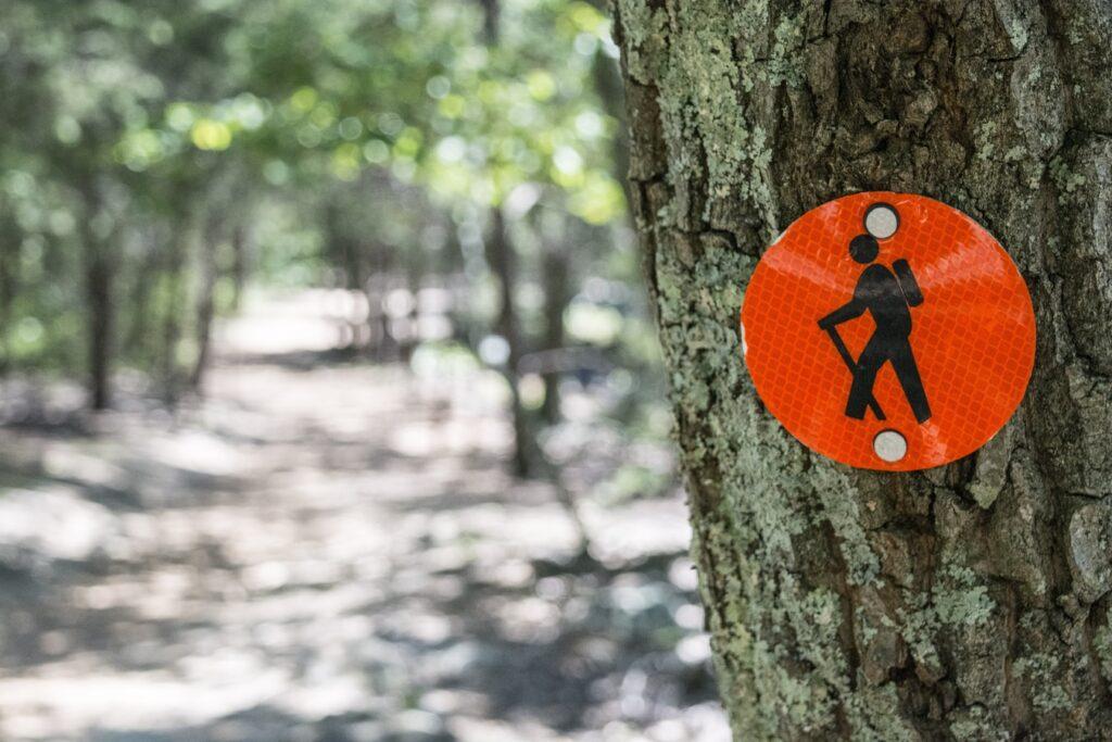 Zaruby Hiking