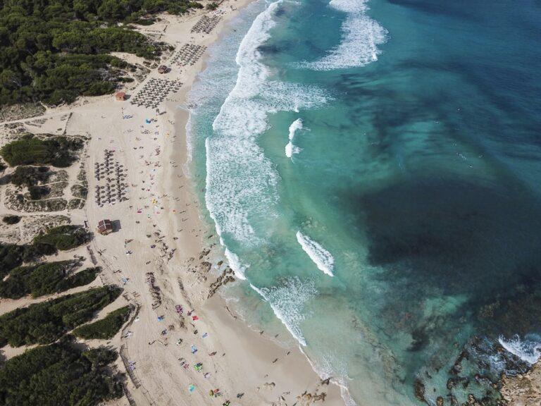 Dog-Friendly Beaches on Mallorca