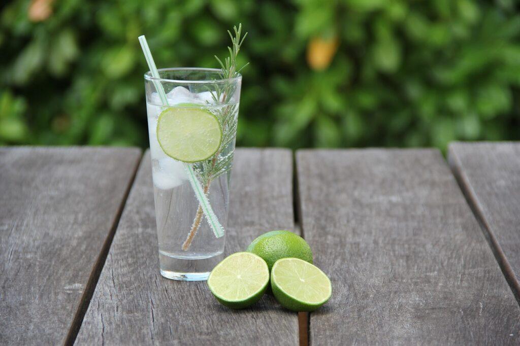 Gin Tonic Menorca