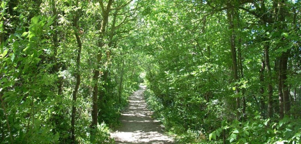Menorca Hiking