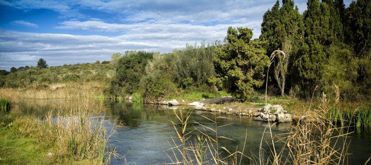 Parc Natural de la Marjal de Pego-Oliva
