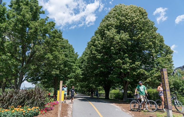 Lake Champlain Biking